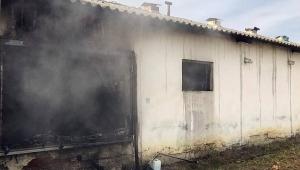 Tavuk Çiftliğinde Yangın! 700 Hindi Yavrusu Telef Oldu