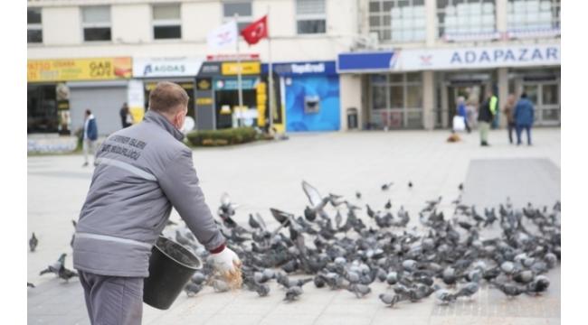 Büyükşehir Kuşları Aç Bırakmadı